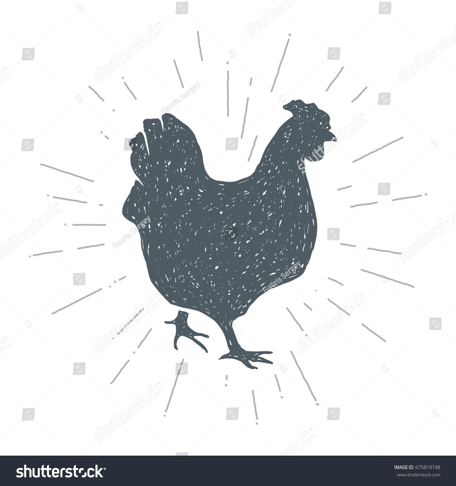 hand drawn vintage chicken sketch style stock vector 675819748