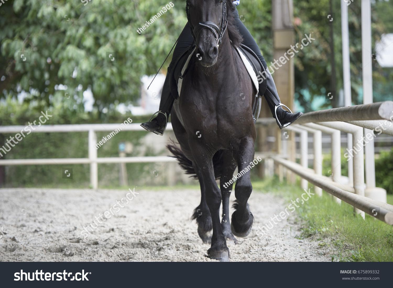 Close Asian Sporty Female Jockey Practice Stock Photo Edit Now 675899332