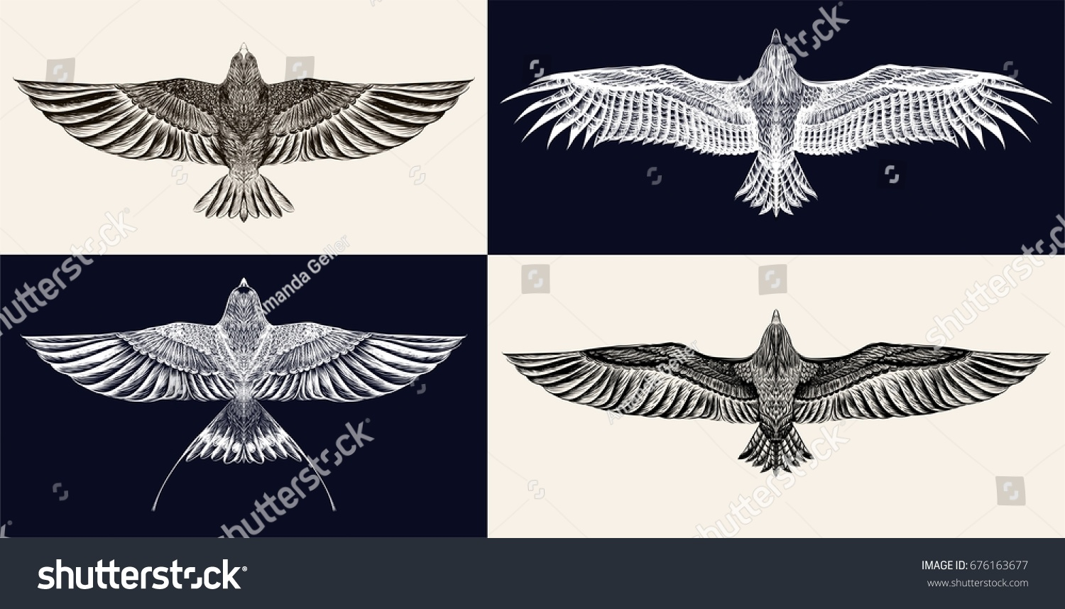 Set of sketches of flying swallows stock vector illustration - Set Of Hand Drawn Birds Eagles And Swallows Black And White Illustration Detailed