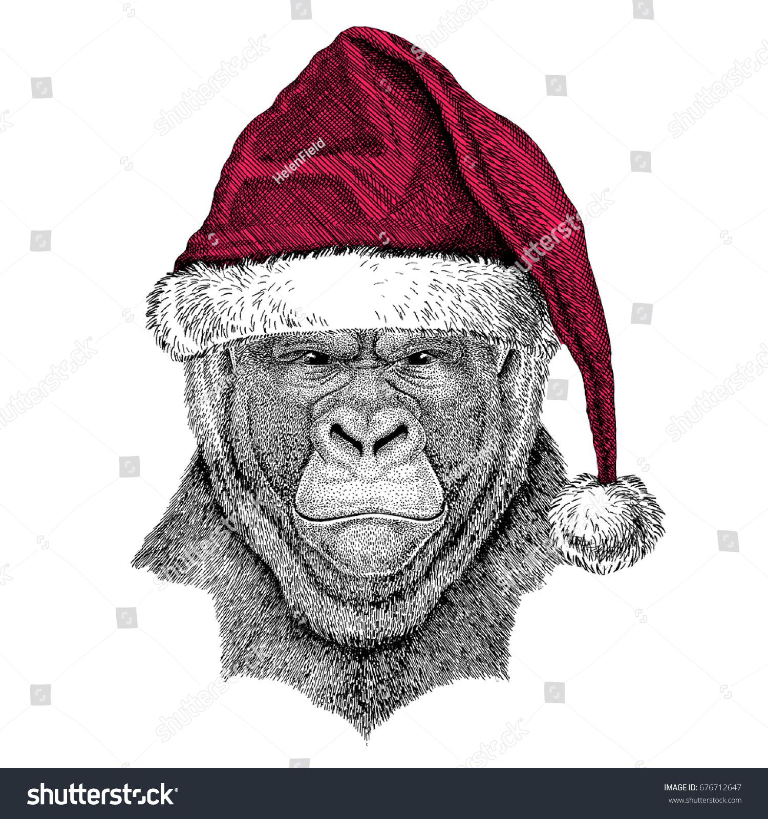 Gorilla Monkey Ape Frightful Animal Christmas Stock ...