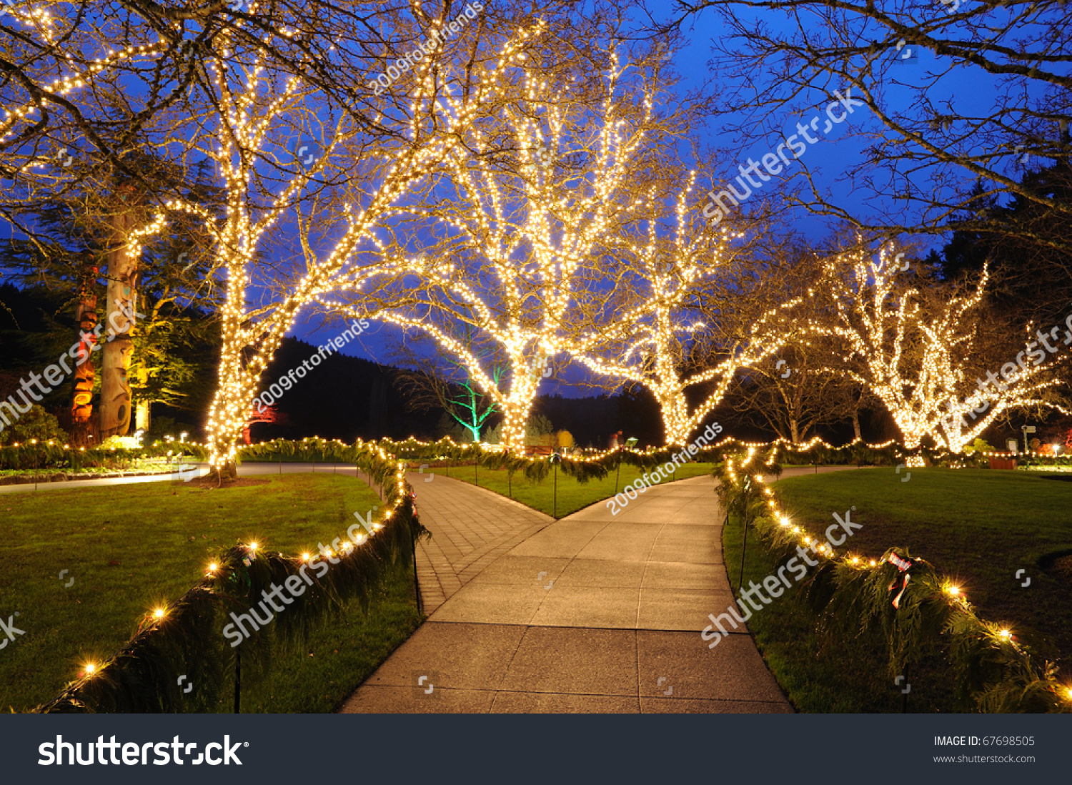 Beautiful Garden Night Scene Christmas Butchart Stock Photo (Royalty ...