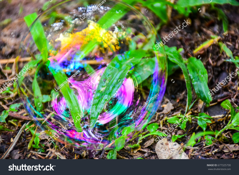 Colorful Soap Bubbles Amid Vegetation Reflection Stock Photo ...