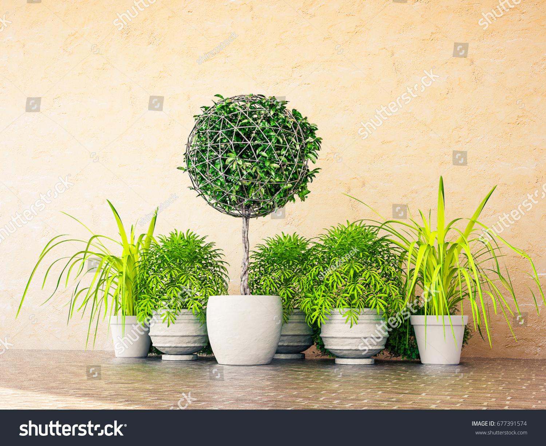 3d Rendering Topiary Plant Frame Pot Stock Illustration 677391574