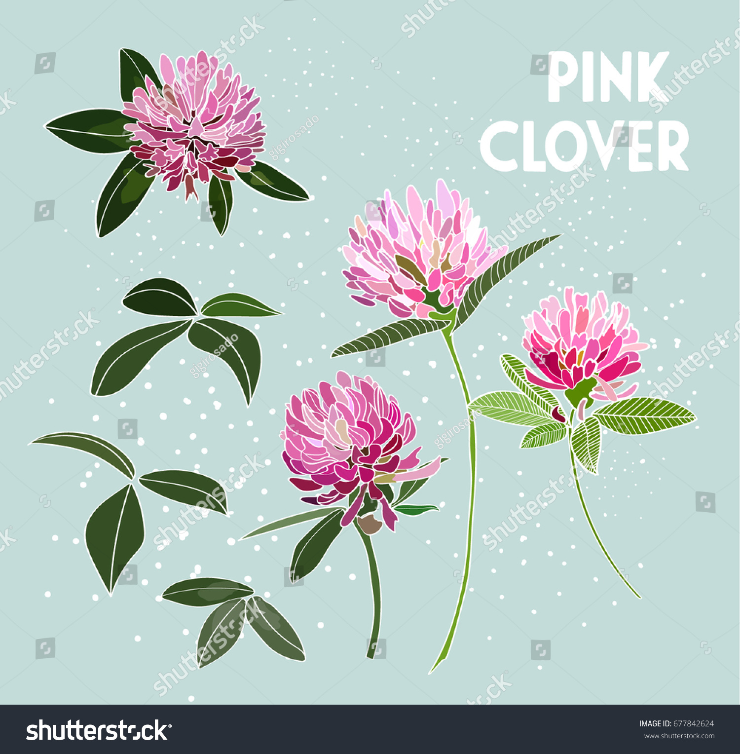 Vector Pink Clover Flower Illustration Element Stock Vector Royalty