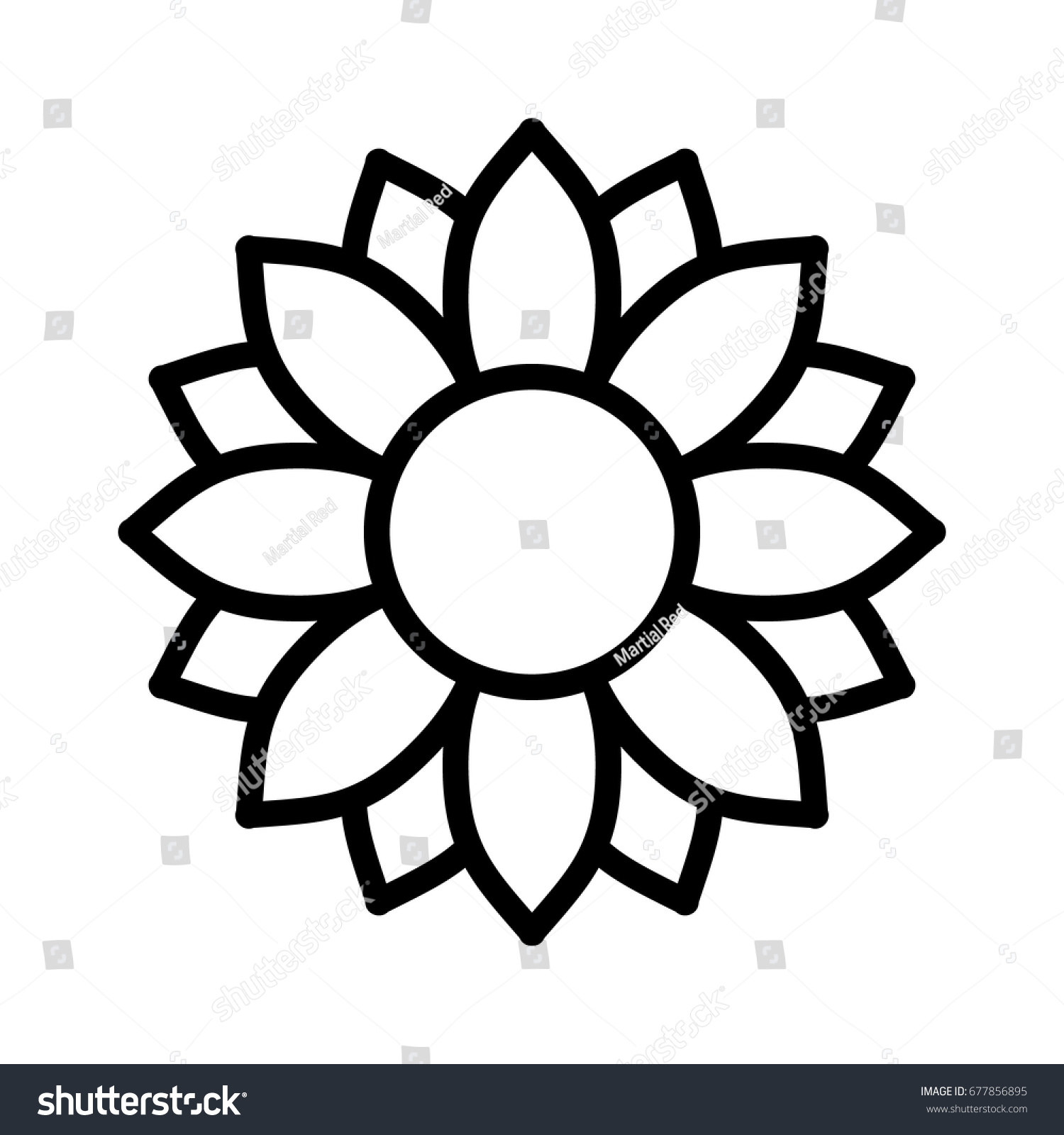 Line Drawing App : Helianthus sunflower blossom line art vector stock