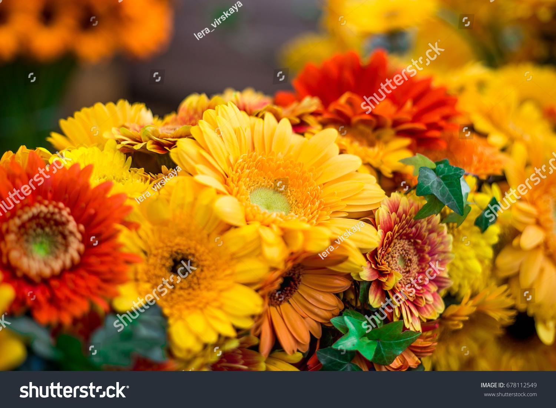 Wedding Decoration Yellow Orange Gerberas Ivy Stock Photo Edit Now