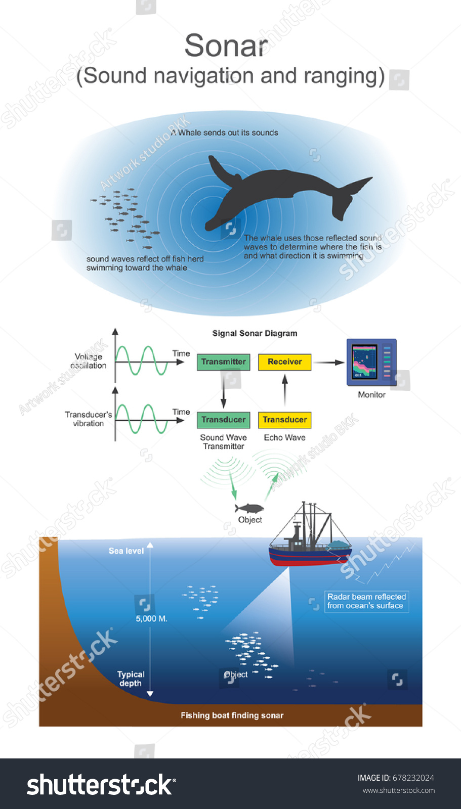 boat and whales sonar diagram   29 wiring diagram images