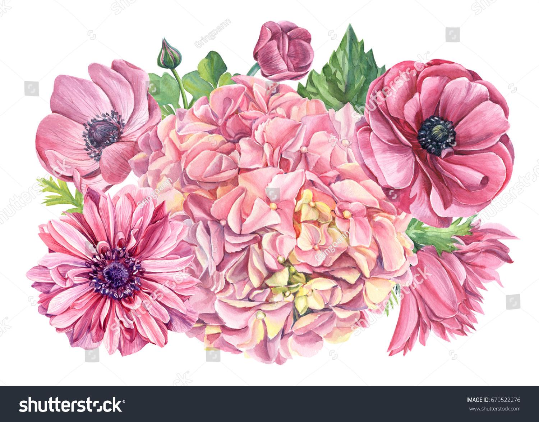 Watercolor floral bouquet flowers pink hydrangeas stock illustration watercolor floral bouquet of flowers pink hydrangeas and anemones hand drawing izmirmasajfo