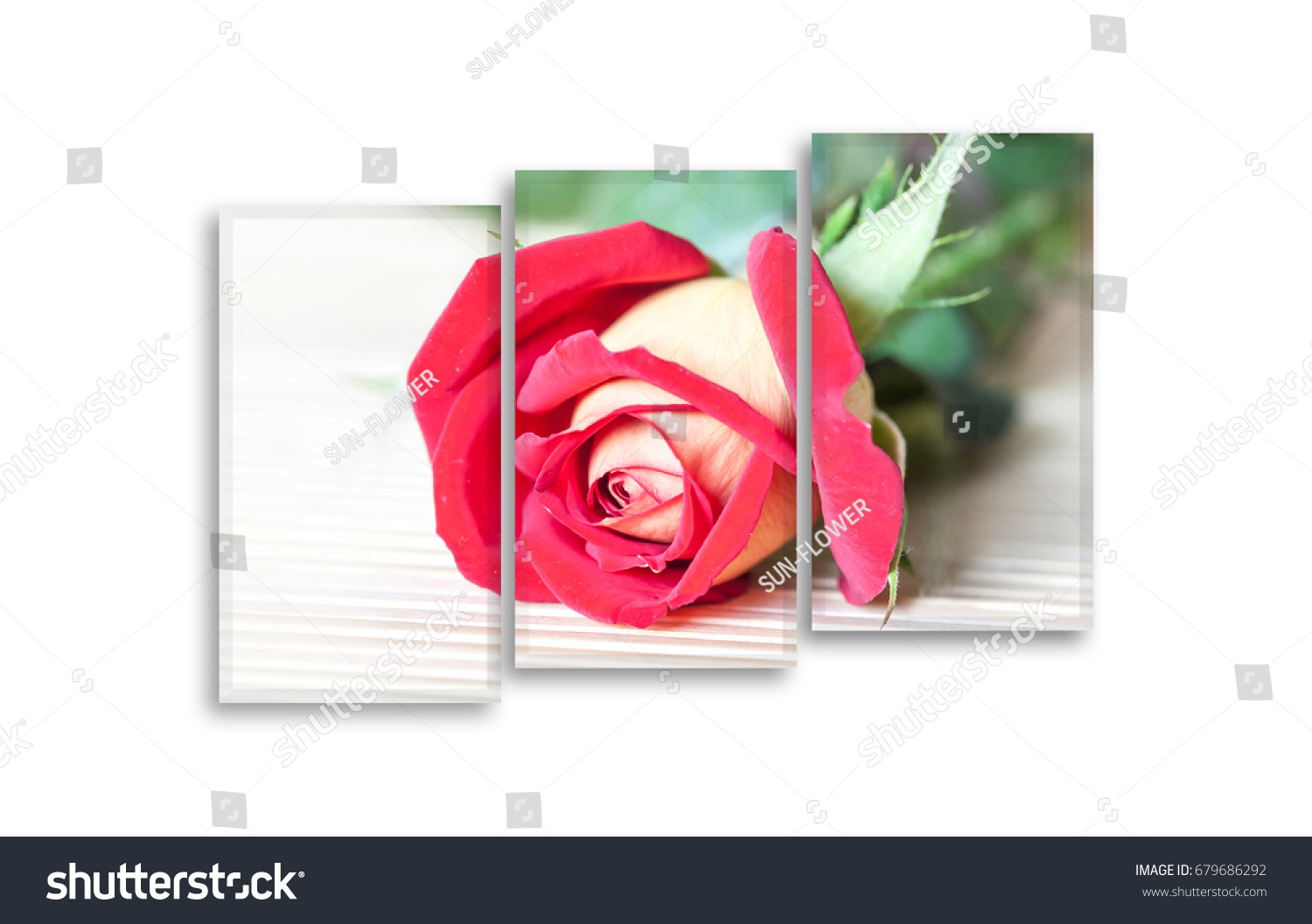 Frames set beautiful red rose picture stock photo edit now frames set with beautiful red rose picture 3 pieces photographic print floral decor mock izmirmasajfo