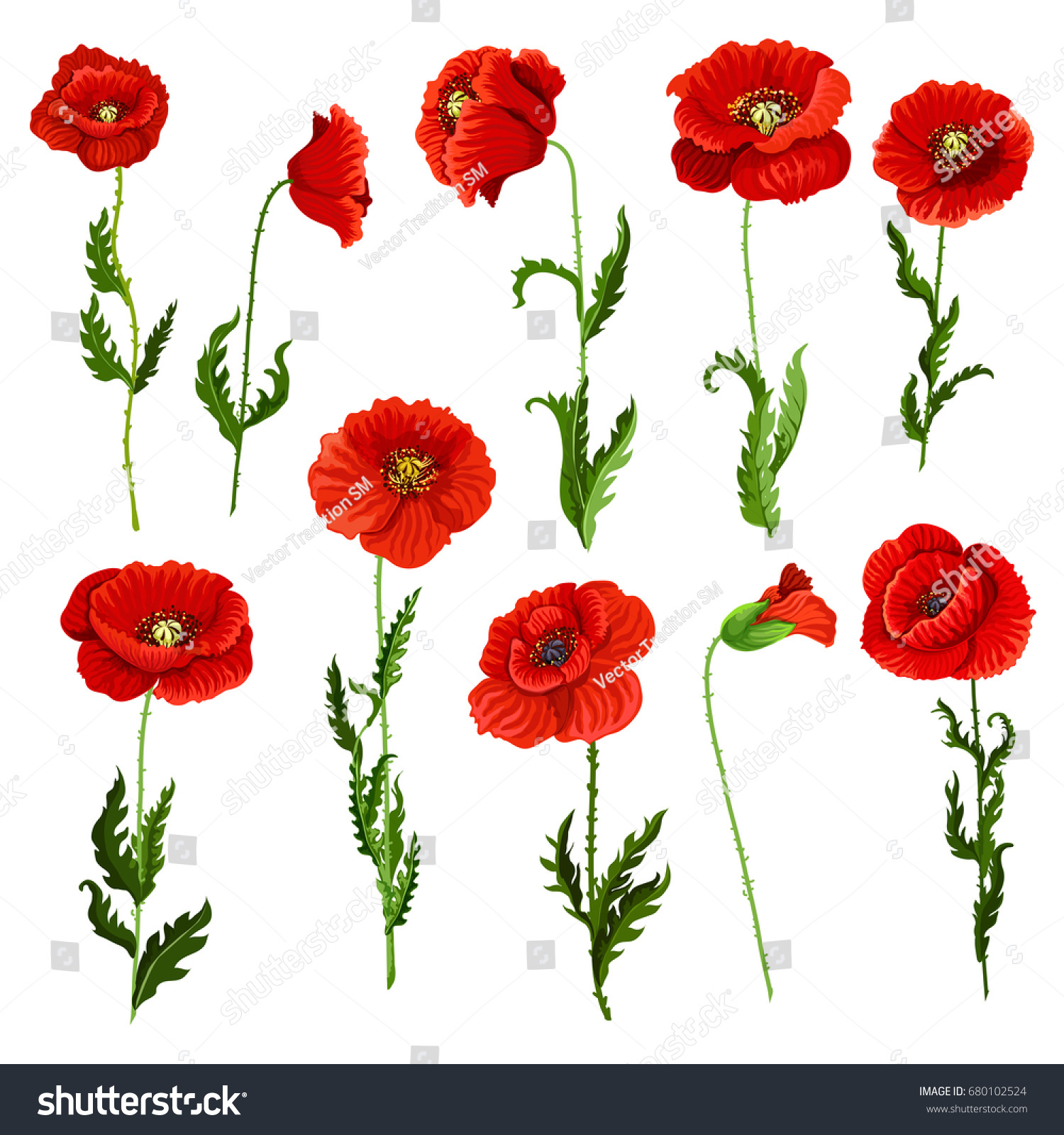 Poppy Flowers Icons Set Vector Isolated Stock Vector Royalty Free