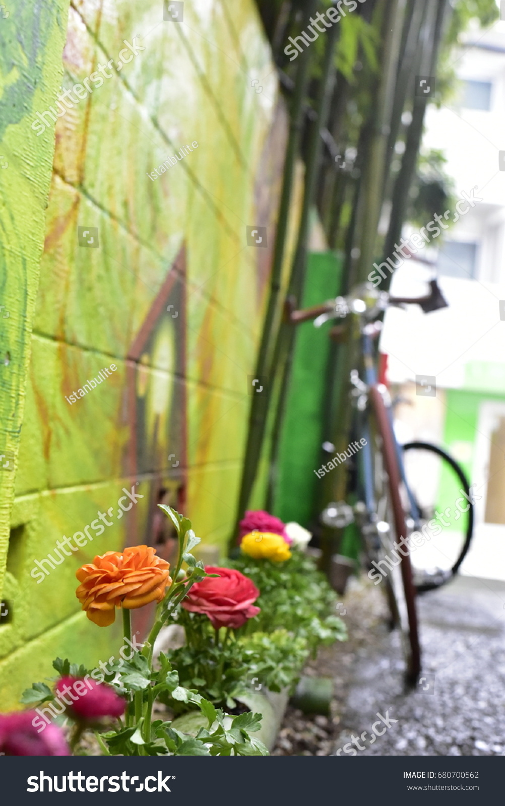 Flowers Wall Art Bicycle Stock Photo 680700562 - Shutterstock
