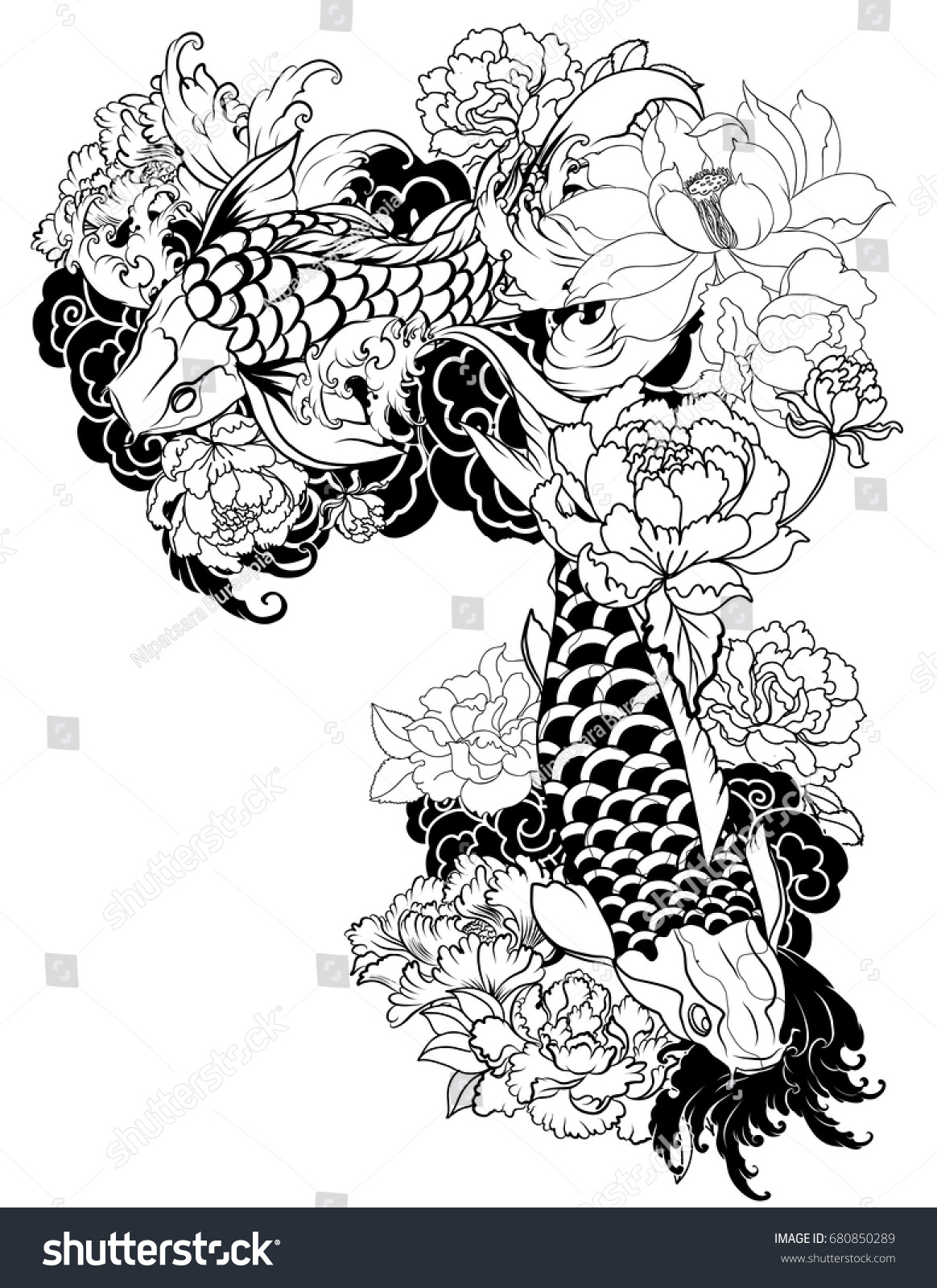 Hand drawn koi carp fish with peony flowers lotuses and water splashes traditional