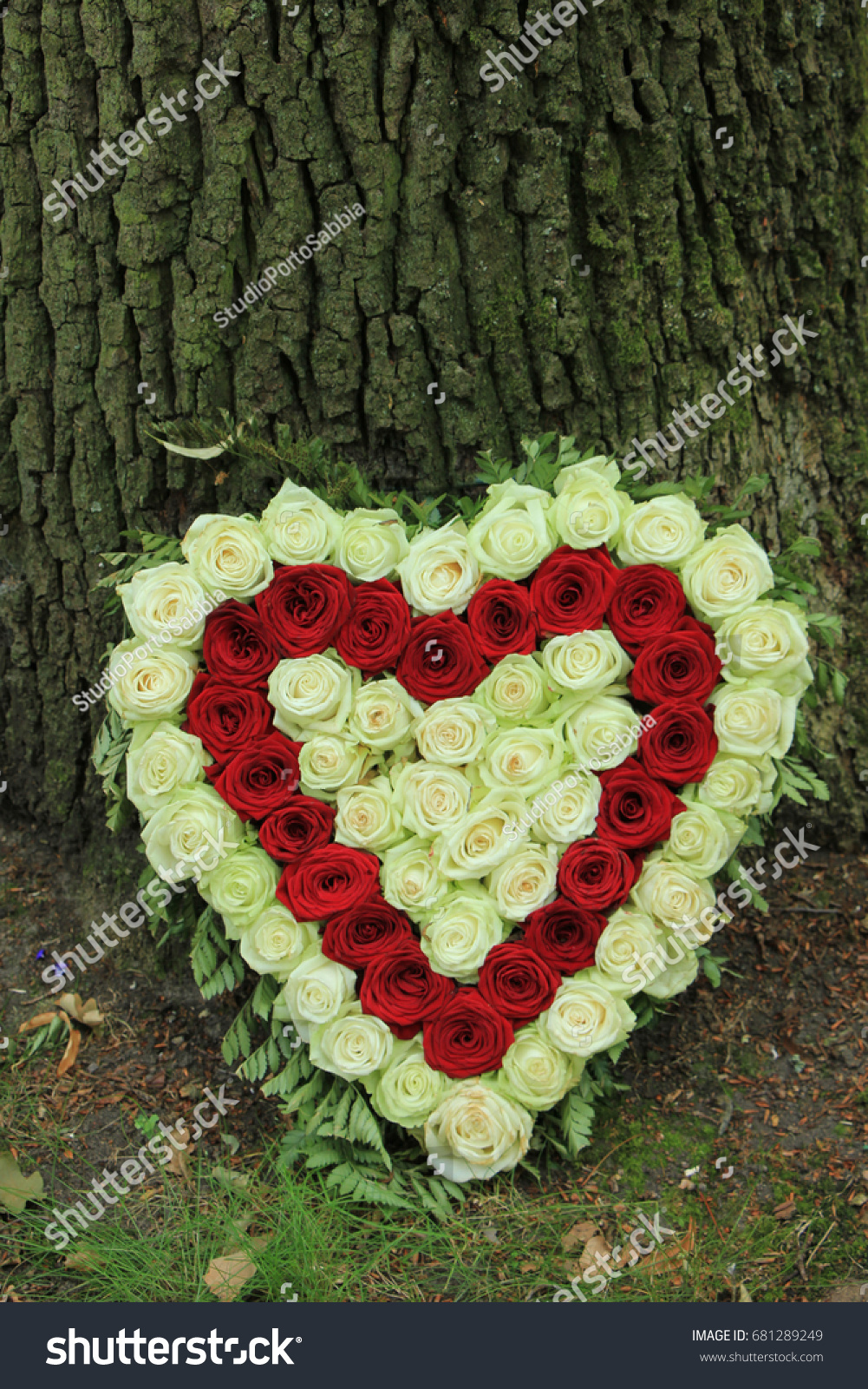 Red white heart shaped sympathy flowers stock photo royalty free red and white heart shaped sympathy flowers or funeral flowers near a tree izmirmasajfo Gallery