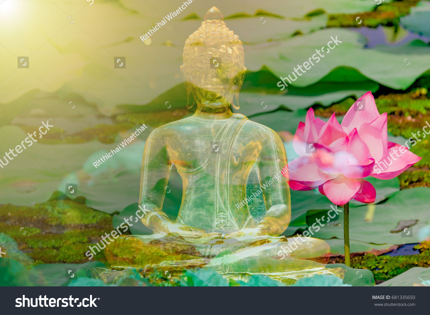 Buddha Statue Water Lily Lotus Flower Stock Photo Edit Now