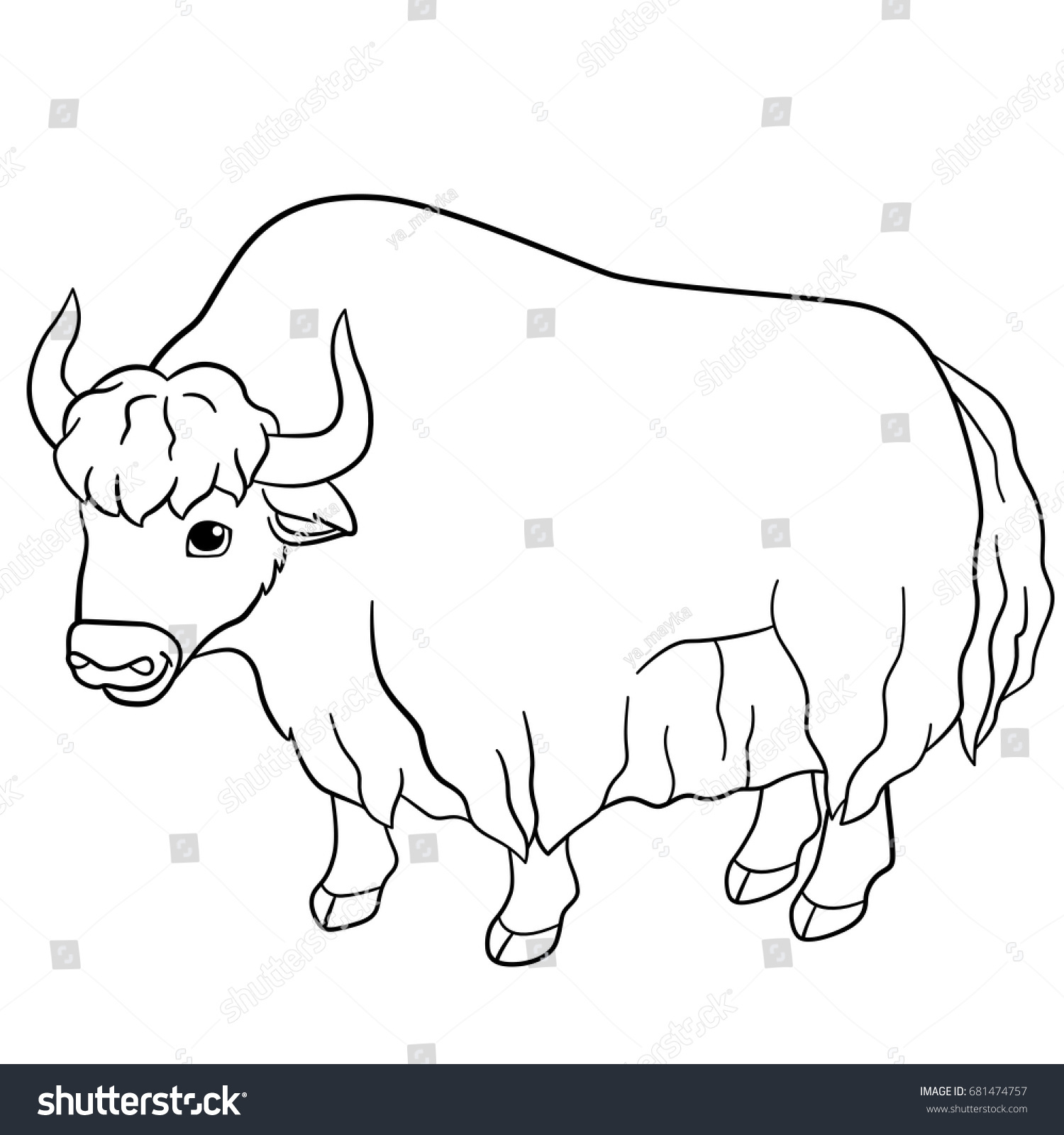 Coloring Pages Beautiful Yak With Little Cute Baby