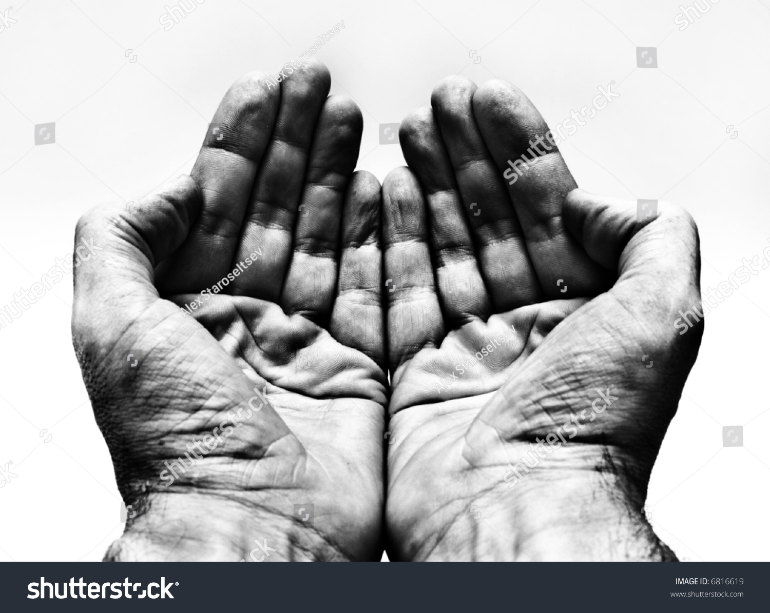 Two Hands, Palms Up Stock Photo 6816619 : Shutterstock