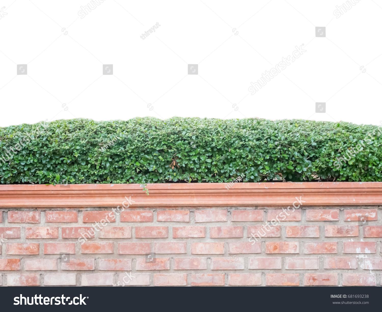 Exterior Decoration Garden On Red Brick Stock Photo 681693238 ...