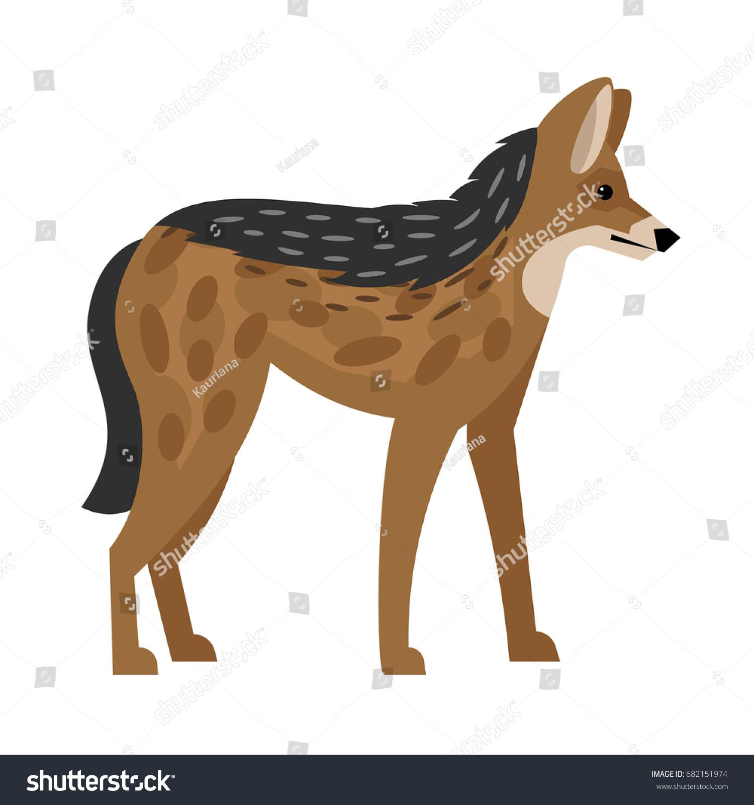Jackal Widespread Animal Stock Vector Royalty Free 682151974