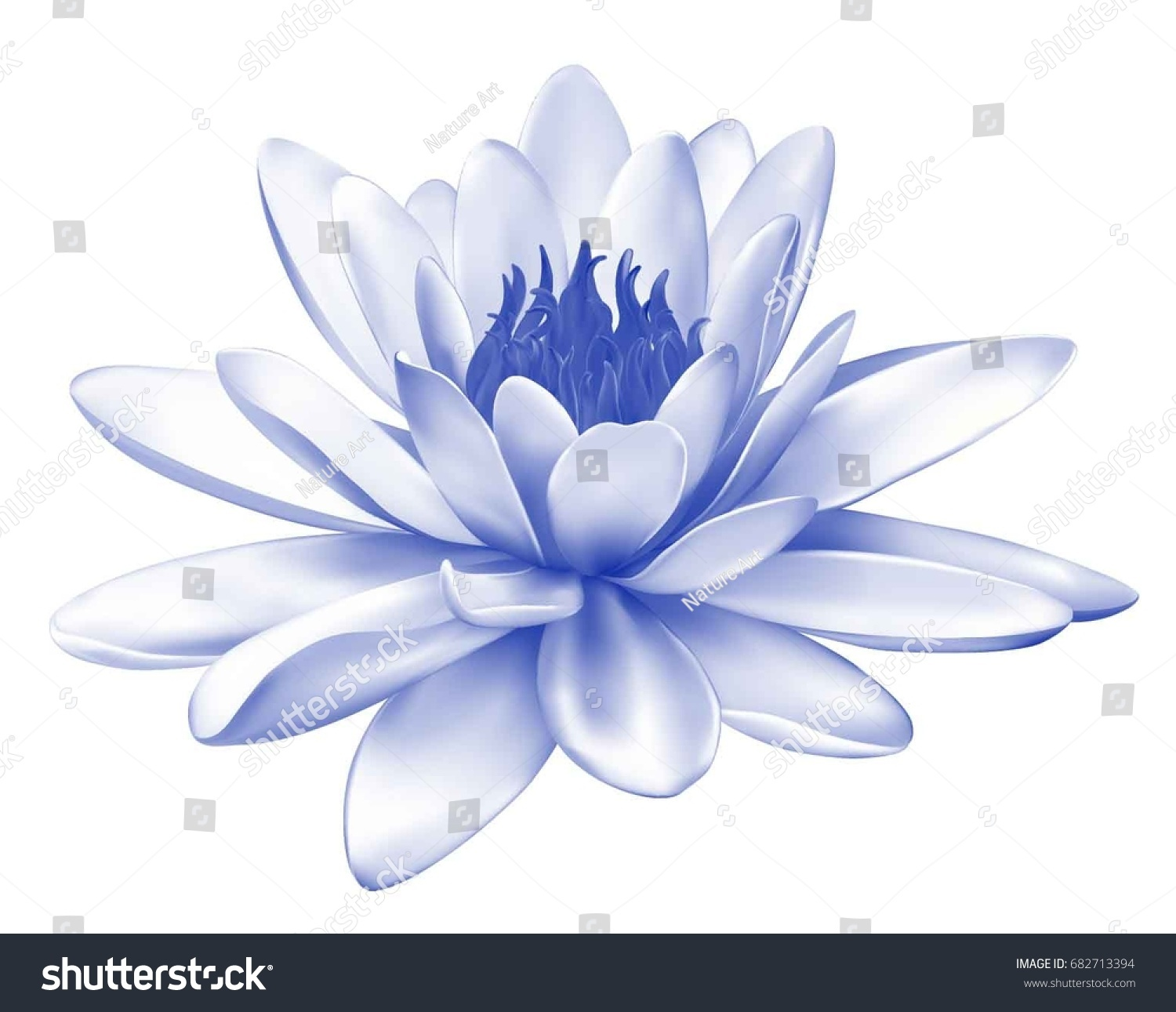 Vector Realistic Illustration Pastel Blue Lotus Stock Vector