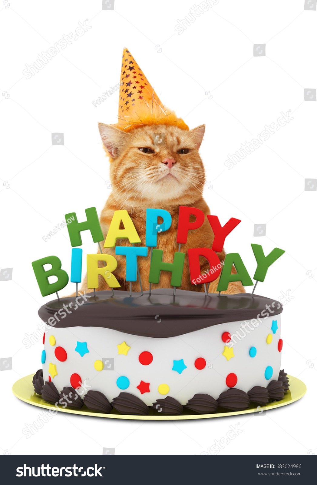 Funny Cat With Happy Birthday Cake Wearing A Party Hat Isolated On White Background