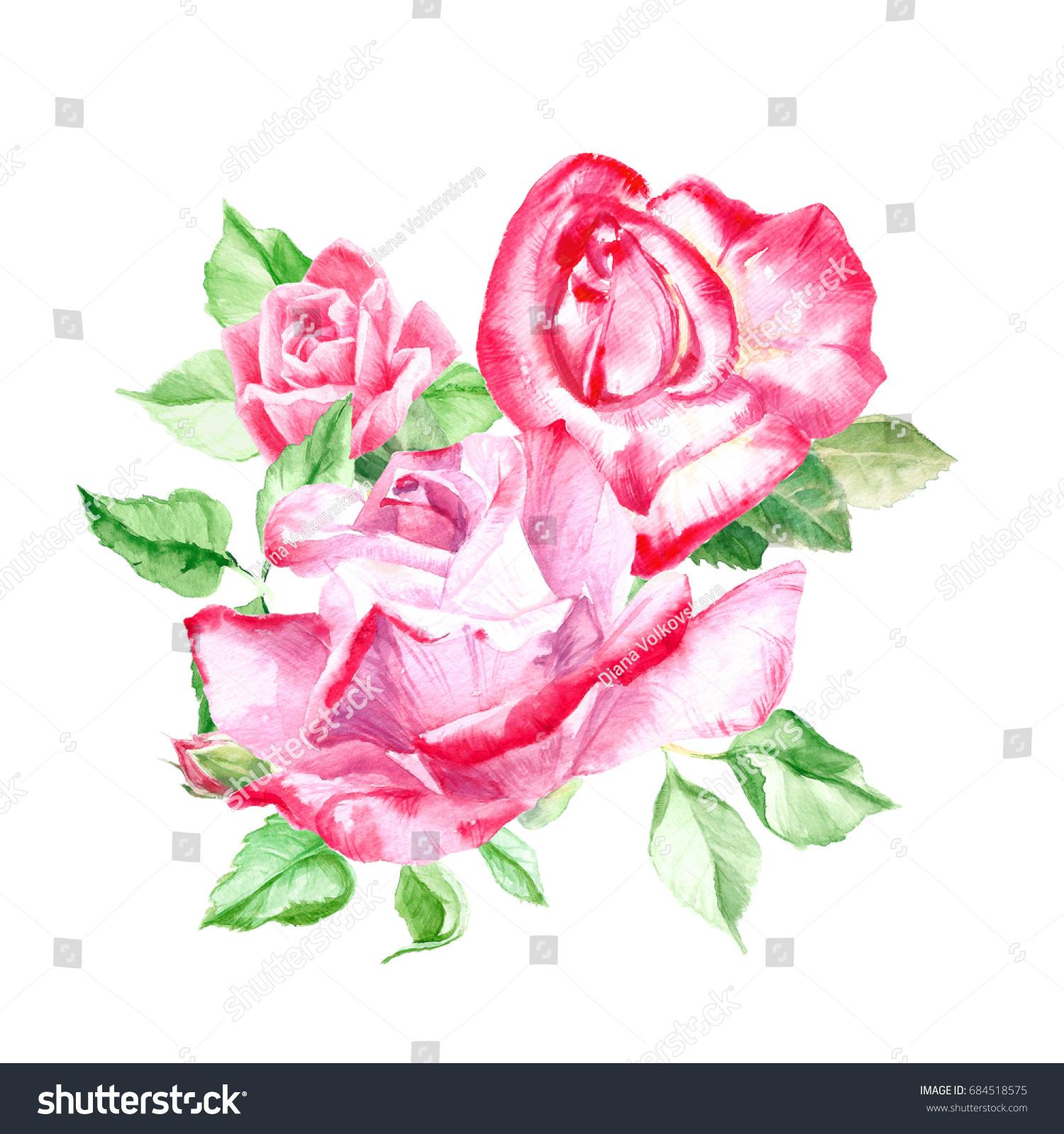 Bouquet Pink Roses Rose Bush Pink Stock Illustration 684518575