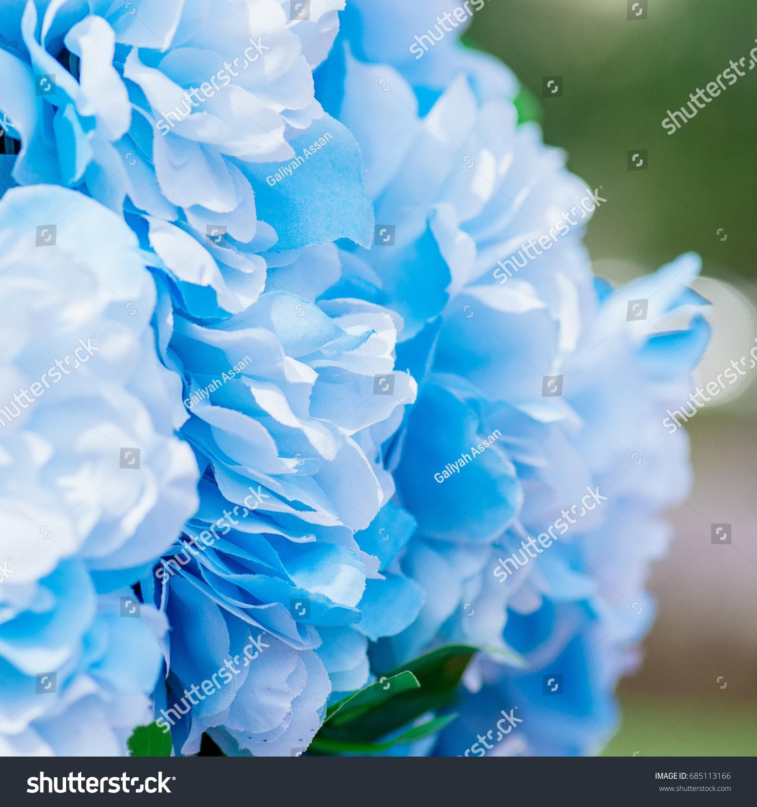 Blue Fake Flowers Background Close Up Stock Photo Royalty Free