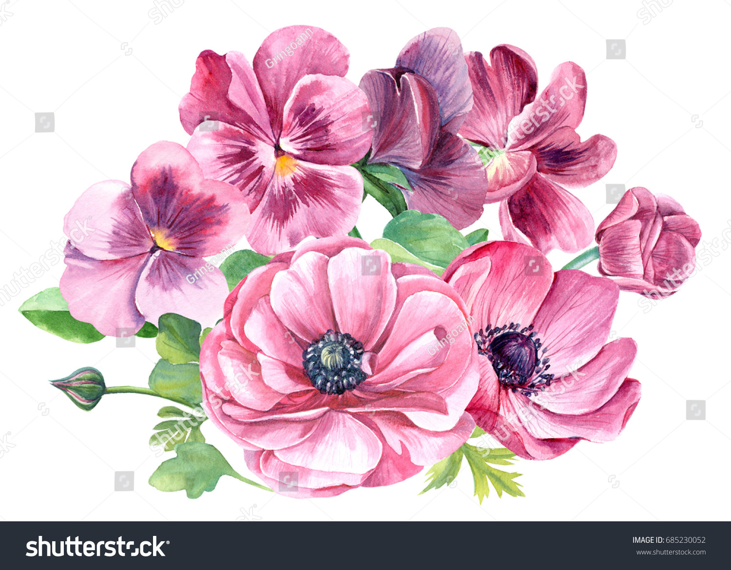 Colorful Floral Bouquet Pink Pansy Anemones Stock Illustration
