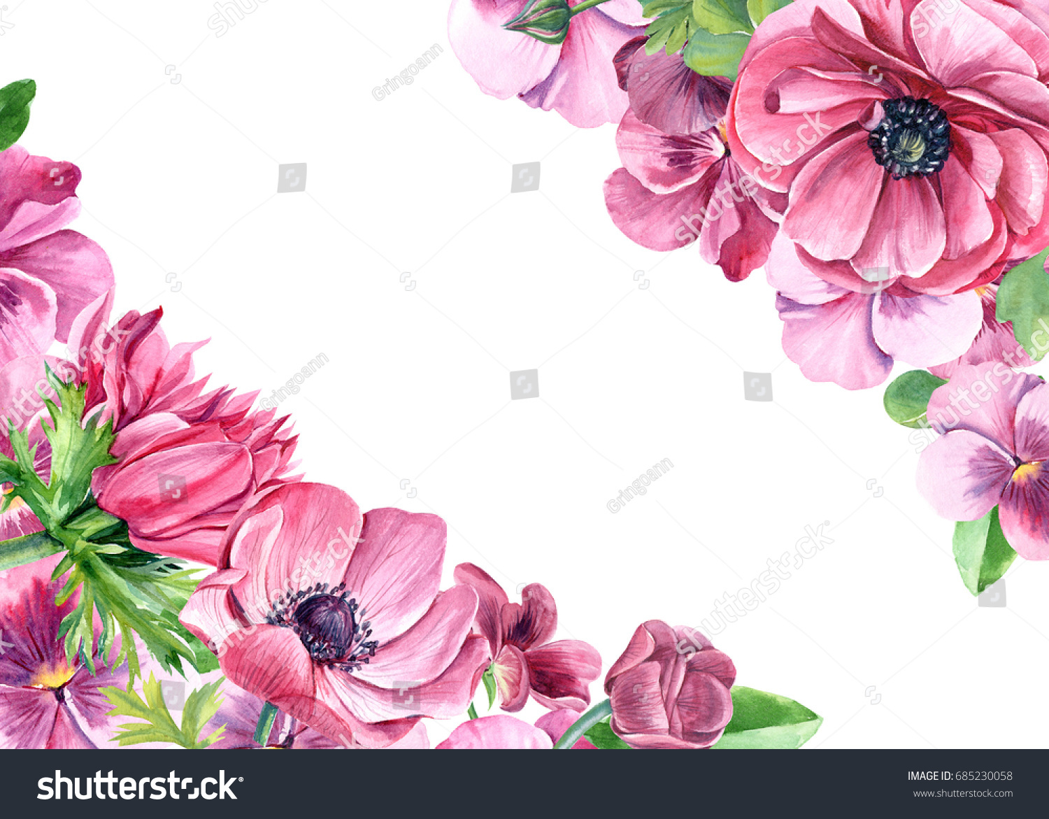 Hand Painted Illustration With Pink Pansy And Anemones Flowers