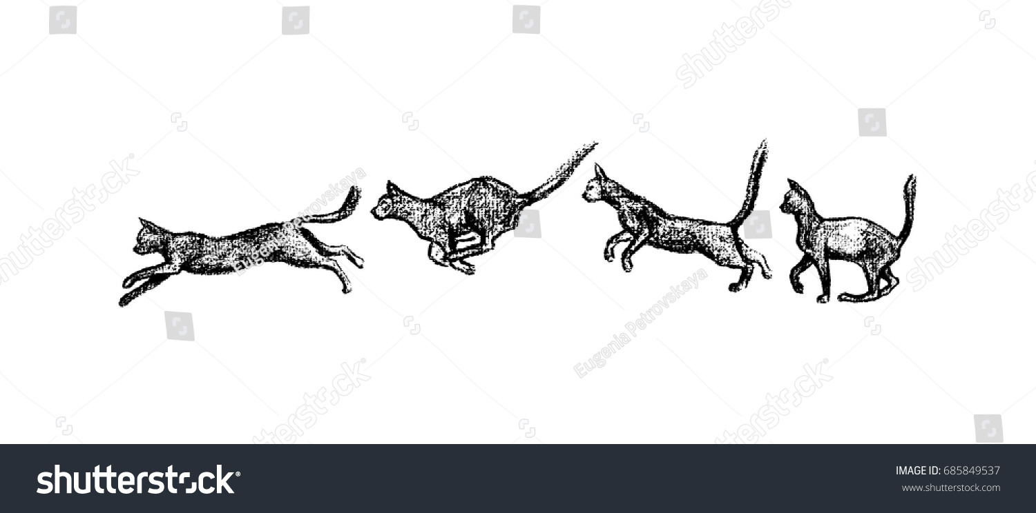Vector Illustration Jumping Cat Set Freeze Stock Vector (Royalty ...