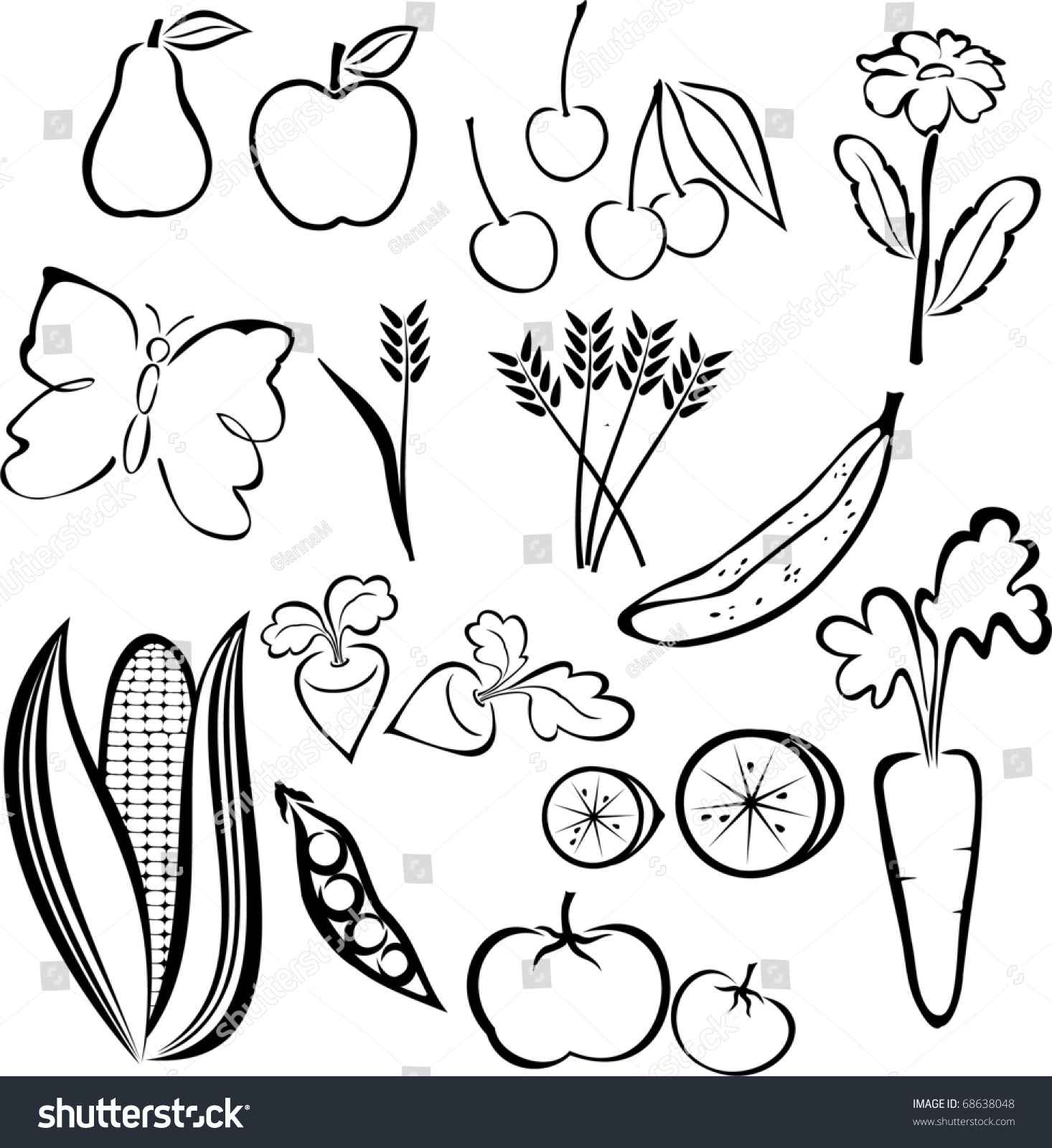 Line Art Vegetables : Set fruits vegetables line drawings isolated stock