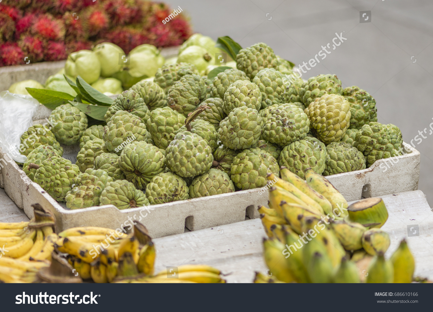 sugar apple many kind fruits sold stock photo (edit now) 686610166