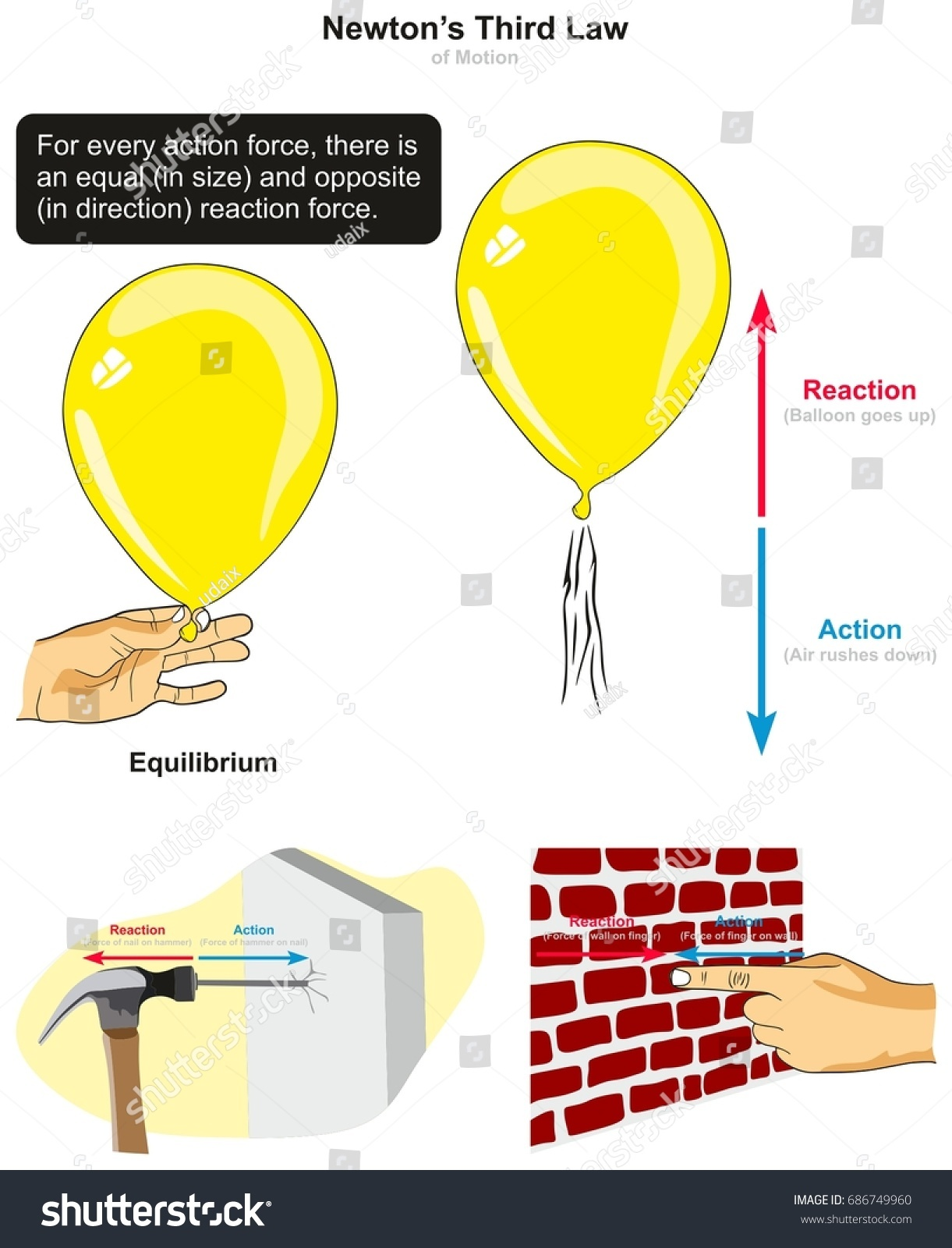third law motion infographic diagram examples のベクター画像素材