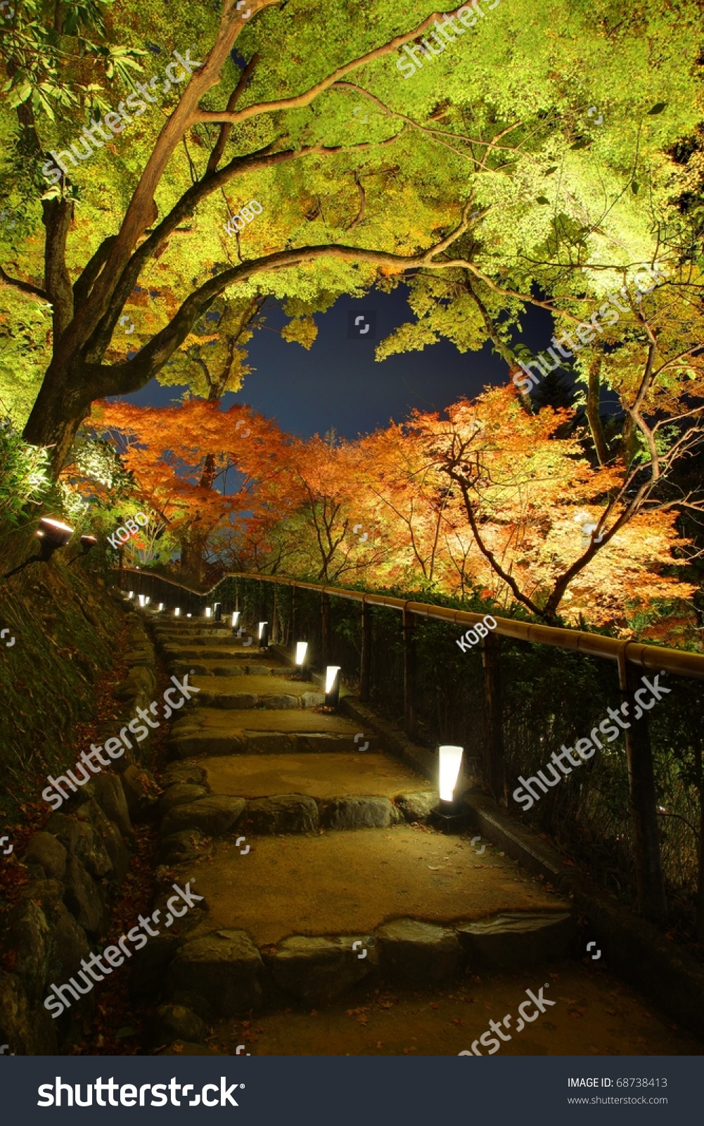 Autumn Japanese Garden Maple Night Kyotojapan Stock Photo 68738413