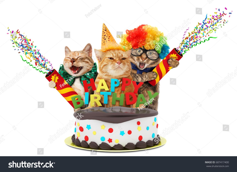 Super Funny Cats Petard Birthday Cake They Stock Photo Edit Now 687417400 Funny Birthday Cards Online Necthendildamsfinfo