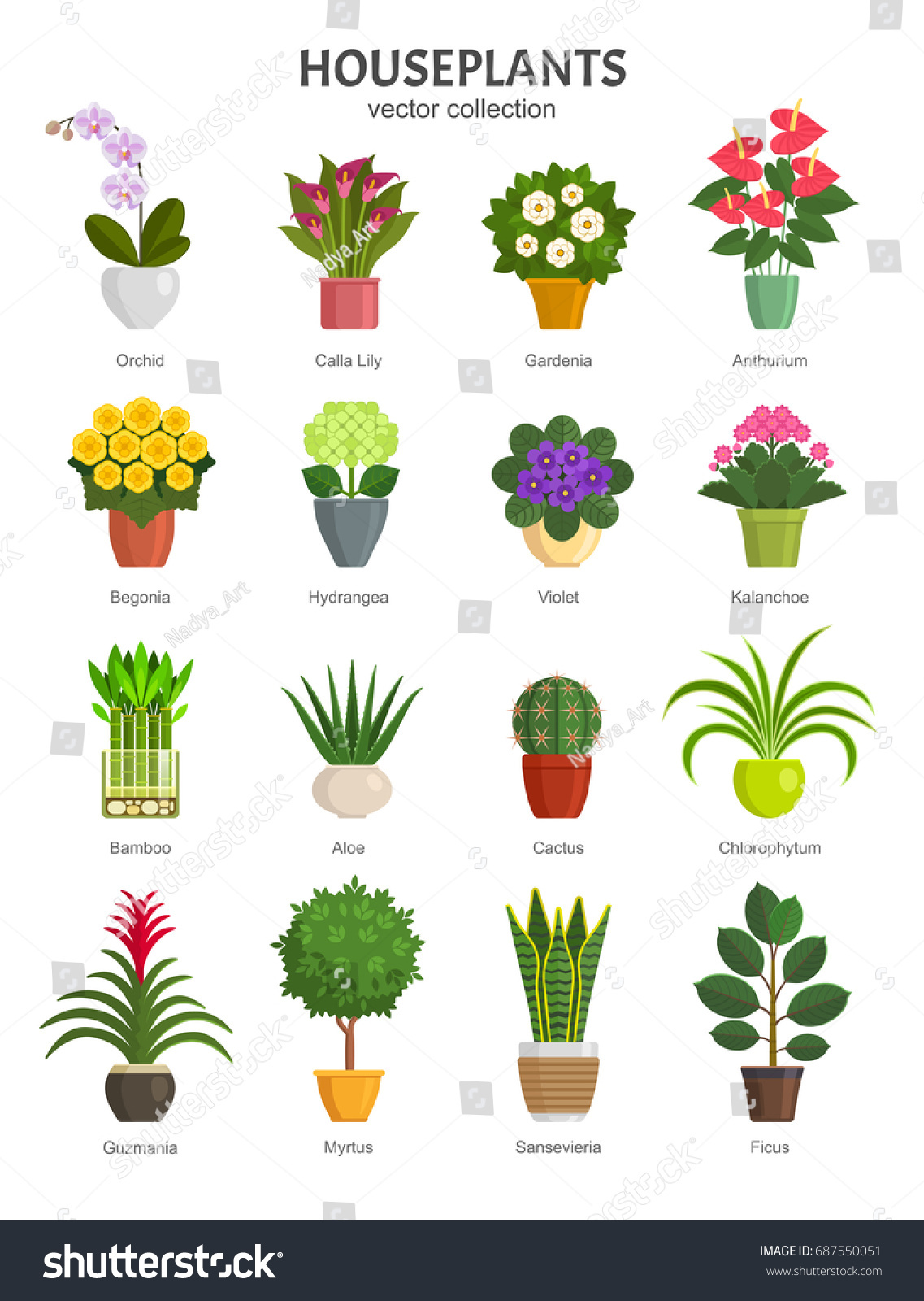 Houseplants Collection Vector Illustration Most Popular Stock Vector