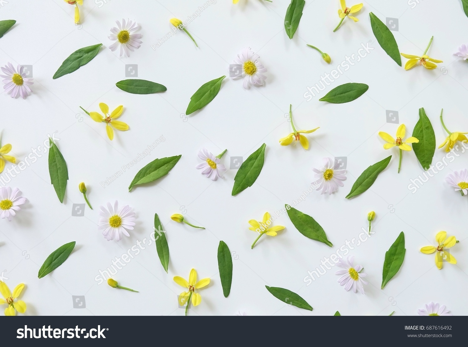 Pattern daisy flowers yellow flower leaves stock photo edit now pattern daisy flowers yellow flower and leaves on white background flat lay top izmirmasajfo
