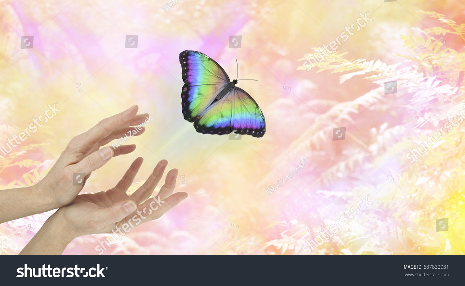 Symbolic spiritual release female hands large stock photo symbolic spiritual release female hands with a large rainbow colored butterfly moving away and up buycottarizona