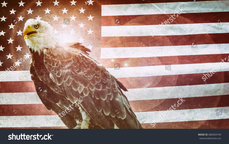 American Bald Eagle Flag Classic Bald Stock Photo 688364740