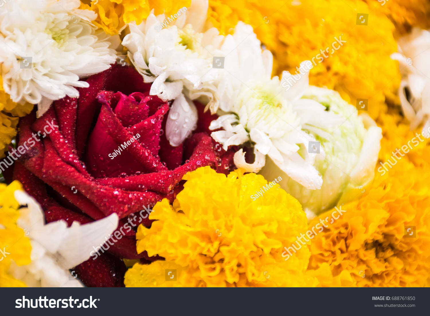 Asia Flowers Around Red Rose Mean Stock Photo Edit Now 688761850