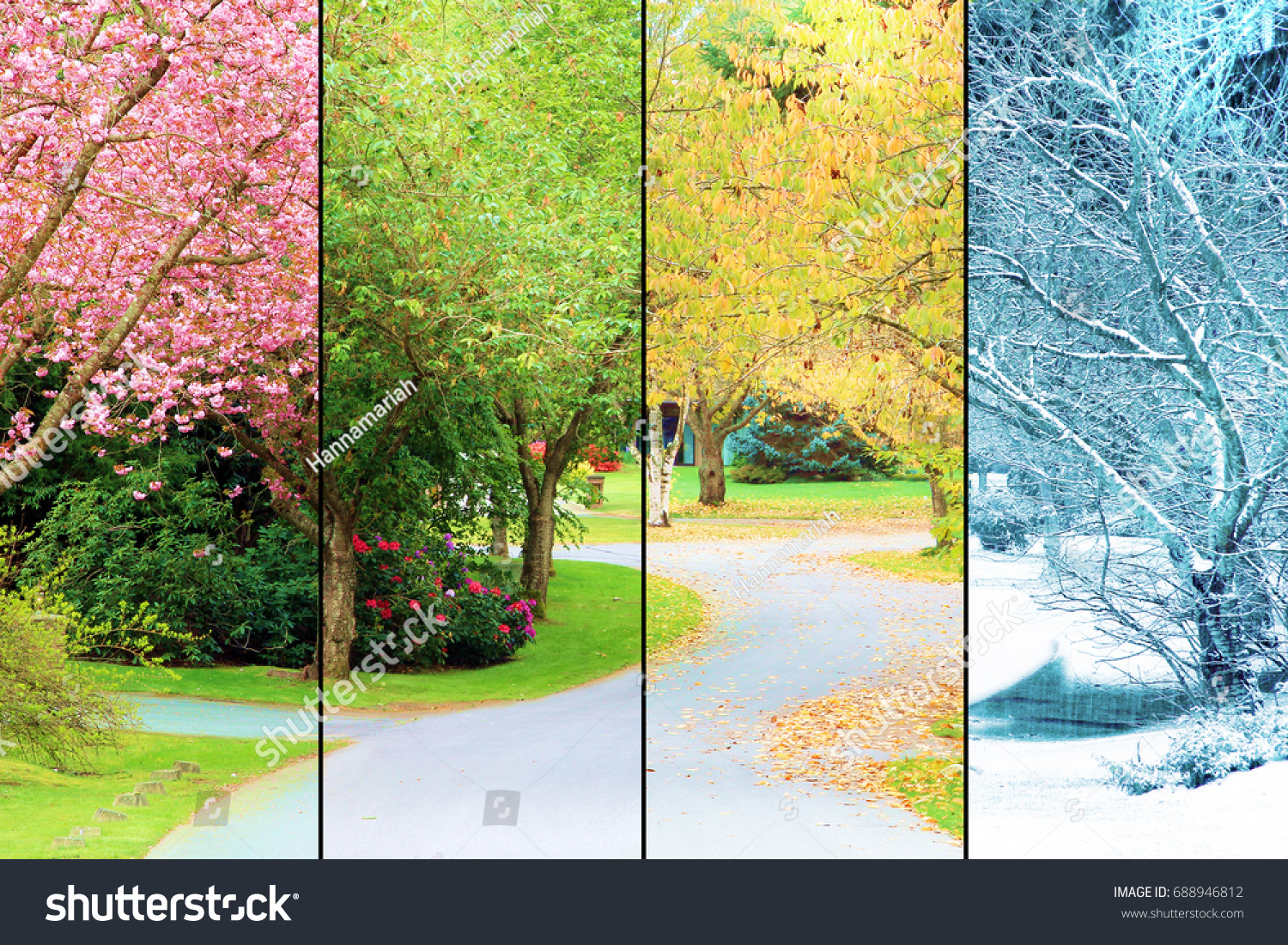 A tree lined street, photographed in all four seasons from the same location. Spring, Summer, Fall, Winter.  #688946812