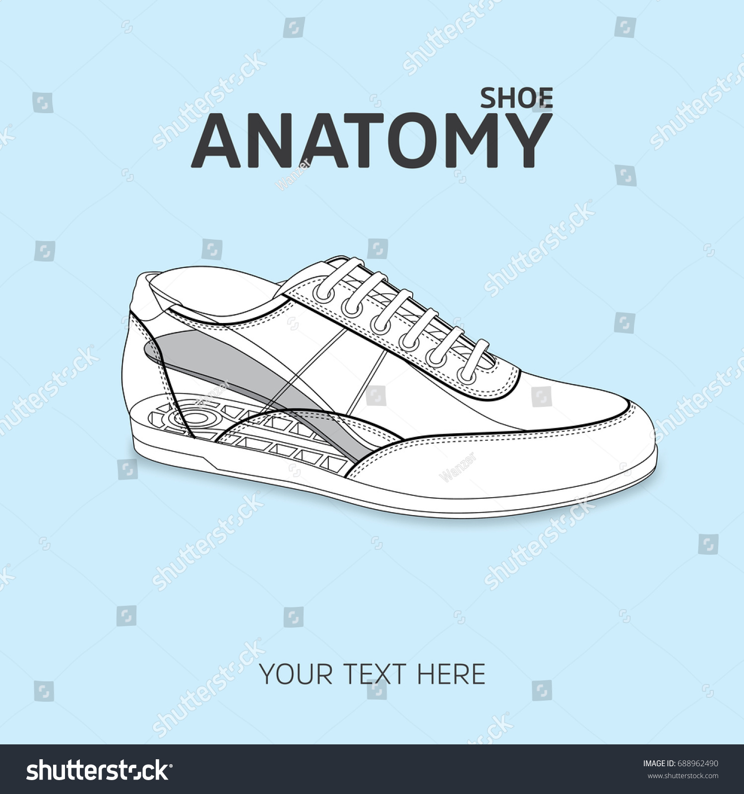 Isolated Shoe Sketch Anatomy Shoe Stock Vector 688962490 Shutterstock