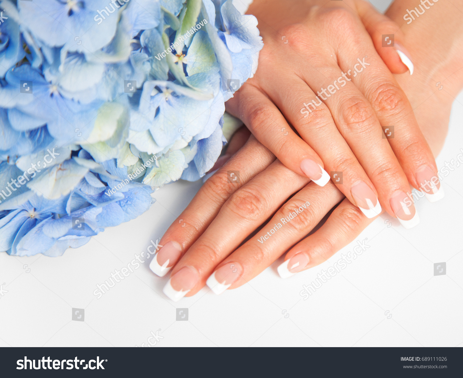 Beauty delicate hands manicure flower hydrangea stock photo royalty beauty delicate hands with manicure and flower hydrangea closeup isolated on white photo of izmirmasajfo