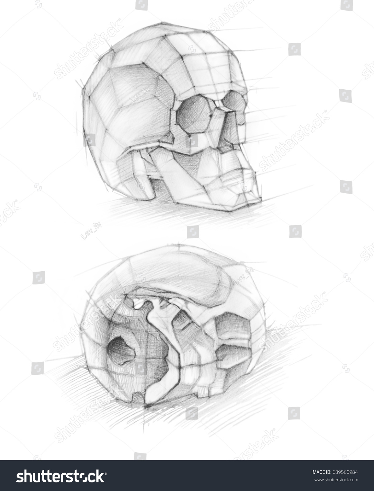 Sketch Soft Pencil Sketch Human Anatomy Stock Illustration 689560984 ...
