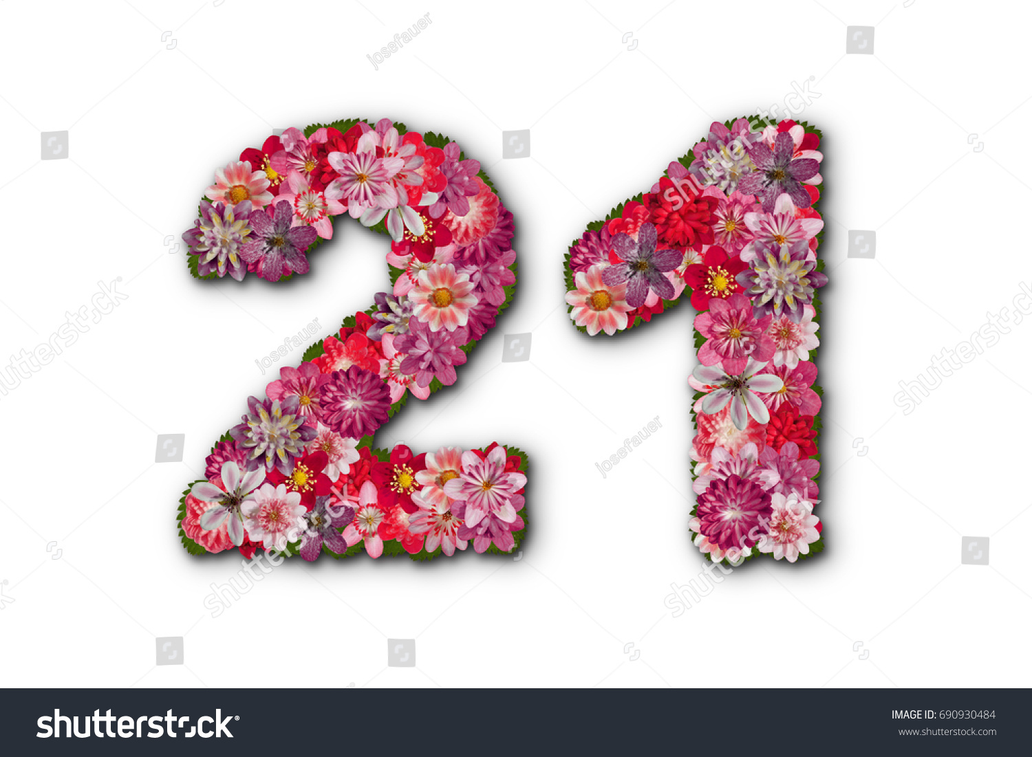 Number 21 birthday flowers stock photo edit now 690930484 number 21 birthday flowers izmirmasajfo