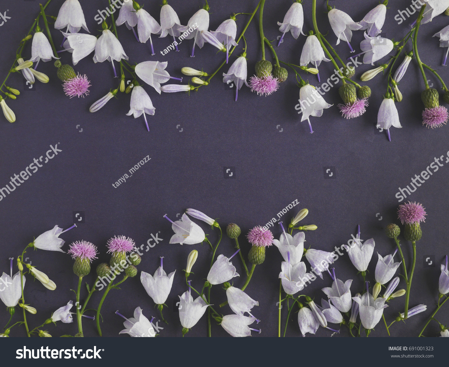 Dark Floral Background Frame Flowers March Stock Photo Edit Now