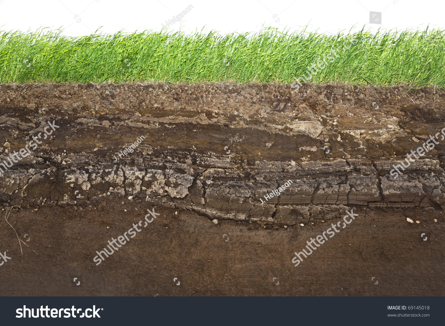 Cross section green grass underground soil stock photo for Soil and green