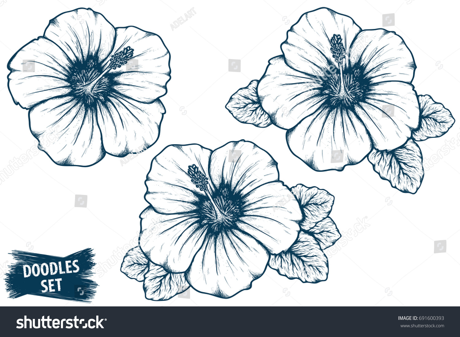 Hawaiian Flower Line Drawing : Hibiscus flower sketch tropical plant doodle stock vector