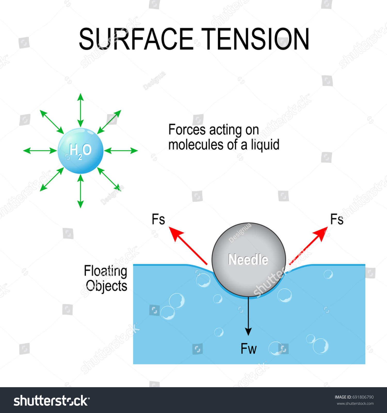 Surface tension forces acting on molecules stock vector 691806790 forces acting on molecules of a liquid and floating objects vector diagram pooptronica Choice Image