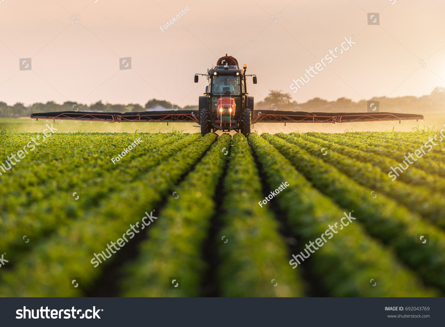 Tractor spraying pesticides on soybean field  with sprayer at spring #692043769