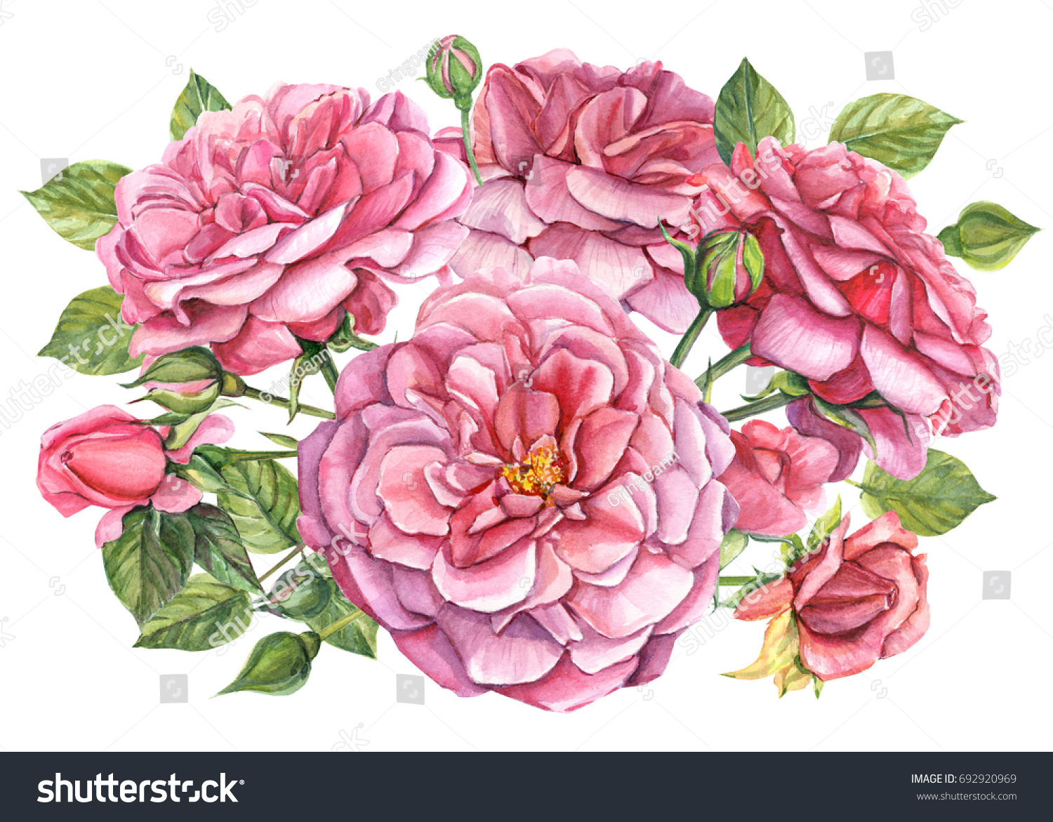 Beautiful Big Bouquet Pink Flowers Roses Stock Illustration